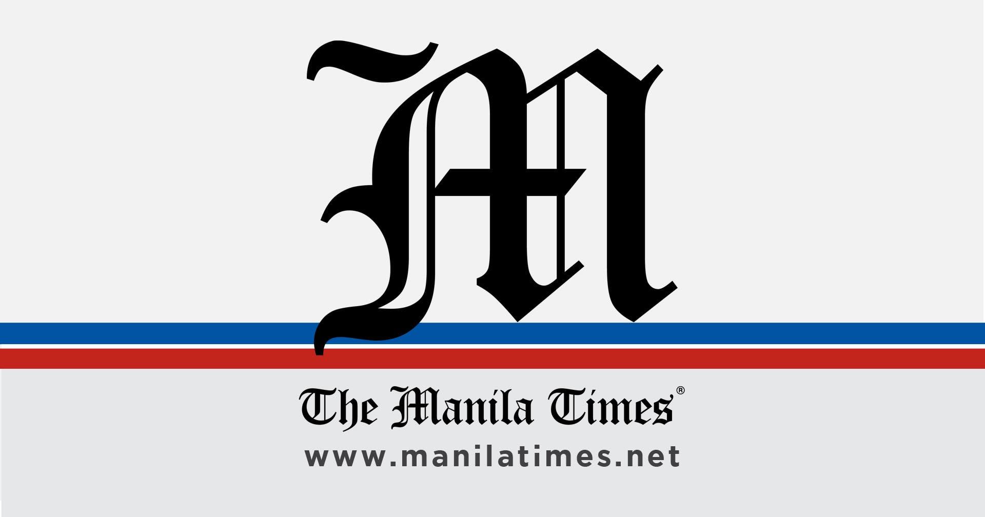 Deutsche Unternehmen wollen in erneuerbare Energien investieren – The Manila Times