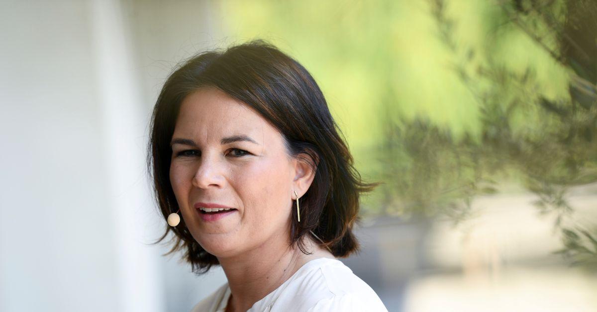 Grünen-Chef weist Plagiatsvorwürfe zurück und bezeichnet sie als glaubwürdig