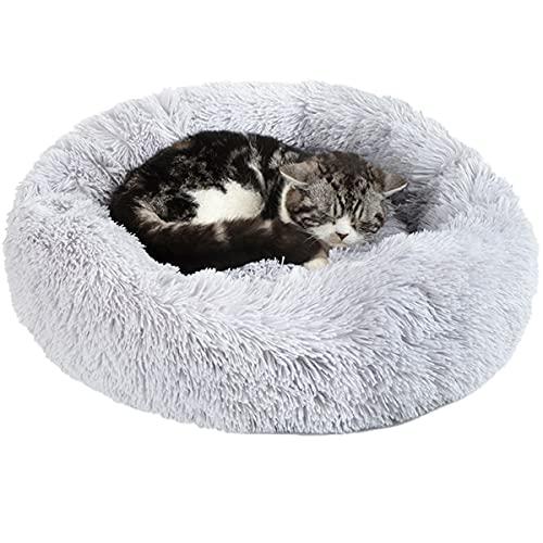 30 Le migliori recensioni di Cucce Per Gatti Da Interno testate e qualificate con guida all'acquisto