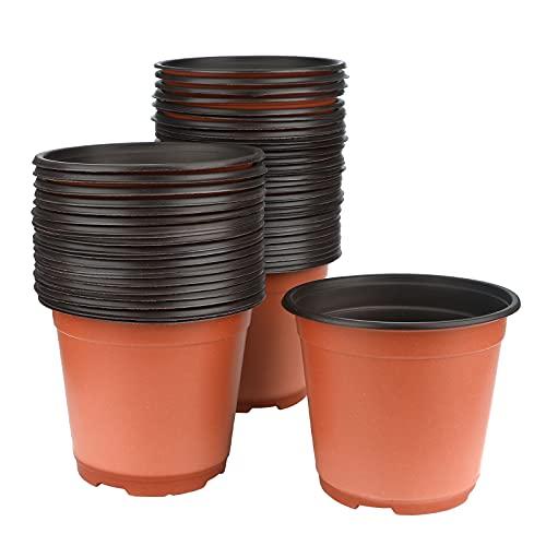 30 Le migliori recensioni di Vasi Plastica Per Piante testate e qualificate con guida all'acquisto